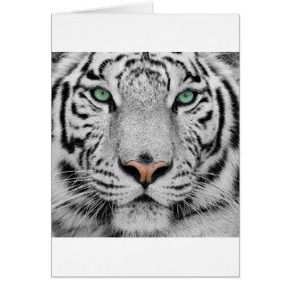 White Tiger Card