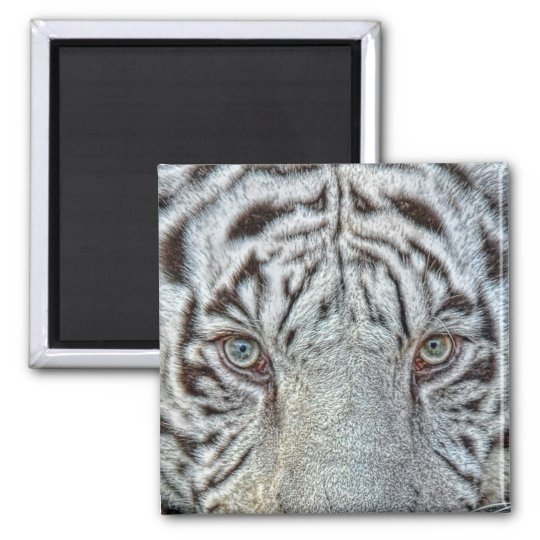 White Tiger Eyes Magnet