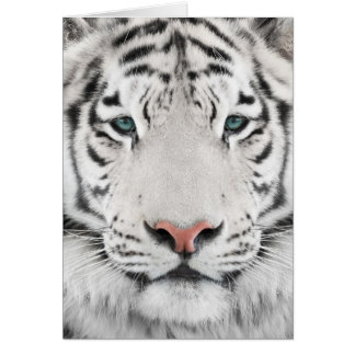 White Tiger Head Note Card