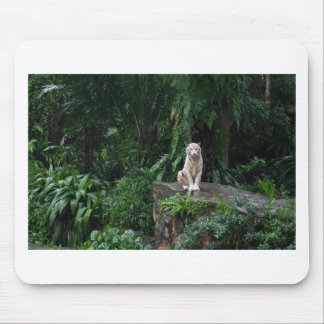 White Tiger in the Jungle Mouse Pad