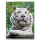 White Tiger notebook