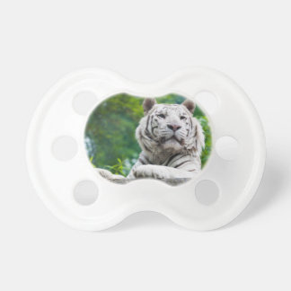 White Tiger pacifier
