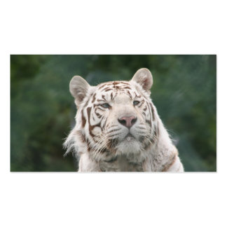 WHITE TIGER PACK OF STANDARD BUSINESS CARDS