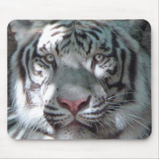 White Tiger Portrait Mouse Mat