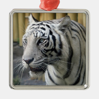 White Tiger Premium Ornament