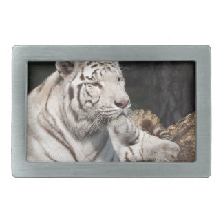 White Tiger Rectangular Belt Buckle