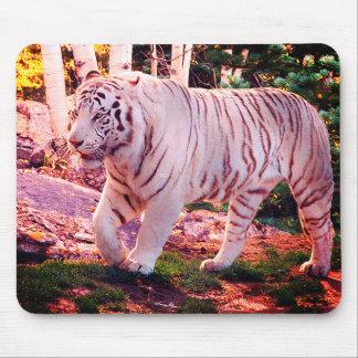 White Tiger Walking 2 - Mouse Mat