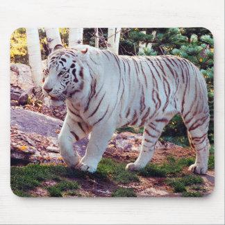 White Tiger Walking 3 - Mouse Mat