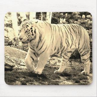 White Tiger Walking 4 - Mouse Mat