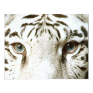 WHITE TIGER'S EYES INVITATION ~ EZ TO CUSTOMIZE!