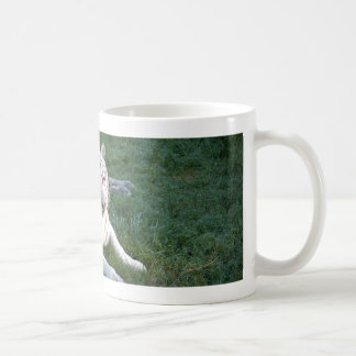 White Tigers on Mugs, Steins & Travel Mugs