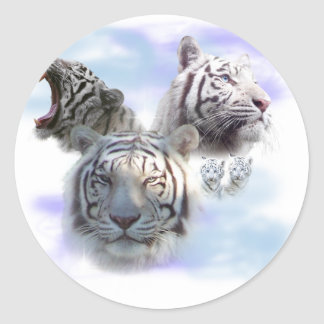 White Tigers Round Sticker
