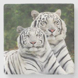 White Tigers Stone Coaster