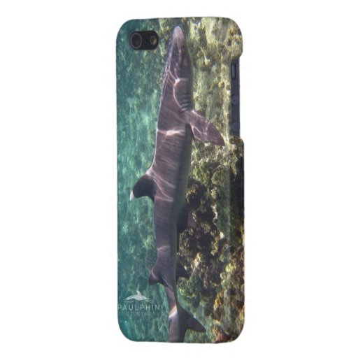 White Tip Reef Shark iPhone 5 Case