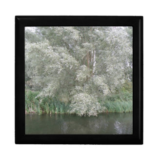White Tree and River Landscape Gift Box