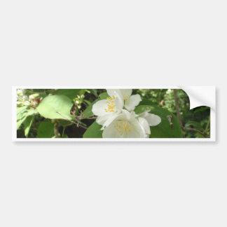 White Tree Blossom Bumper Sticker
