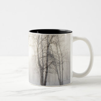 White Trees on a Snowy Day Two-Tone Coffee Mug