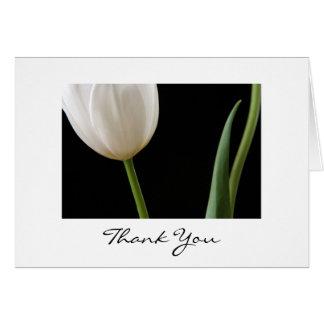 White Tulip Card