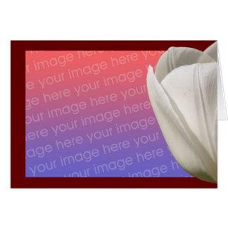 White Tulip Flower Photo Card