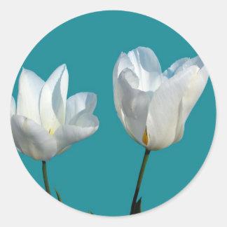 white tulip flowers in aqua blue background round sticker