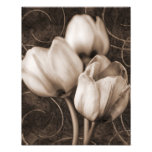 White Tulip Flowers Sepia Black Background floral
