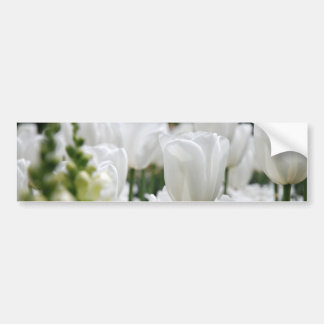 white tulip garden bumper sticker