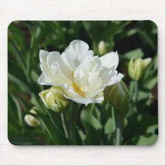 White Tulip Mouse Pads