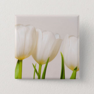 White tulips against a white background, 15 cm square badge