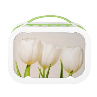 White tulips against a white background, lunch box