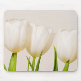 White tulips against a white background, mouse mat