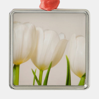 White tulips against a white background, Silver-Colored square decoration