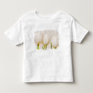 White tulips against a white background, toddler T-Shirt