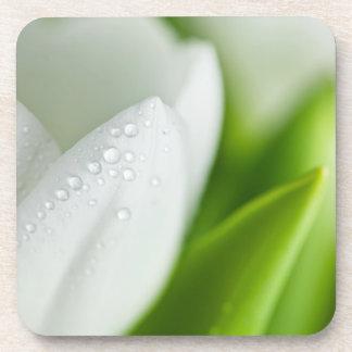 White Tulips Beverage Coasters