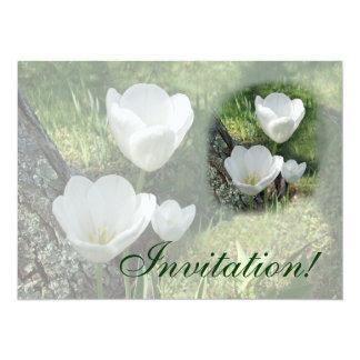 White Tulips Flower Trio 14 Cm X 19 Cm Invitation Card