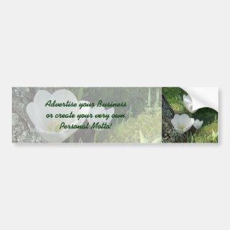 White Tulips Flower Trio Bumper Sticker