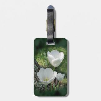 White Tulips Flower Trio Luggage Tag