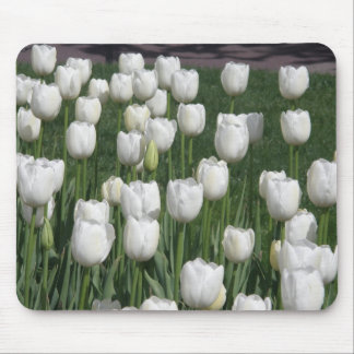 White Tulips Mousepads