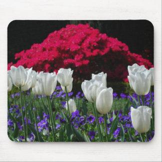 White Tulips Mousepad