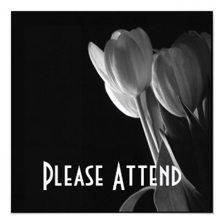 White Tulips Photo On Black Background 13 Cm X 13 Cm Square Invitation Card
