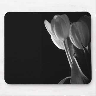 White Tulips Photo On Black Background Mouse Pads