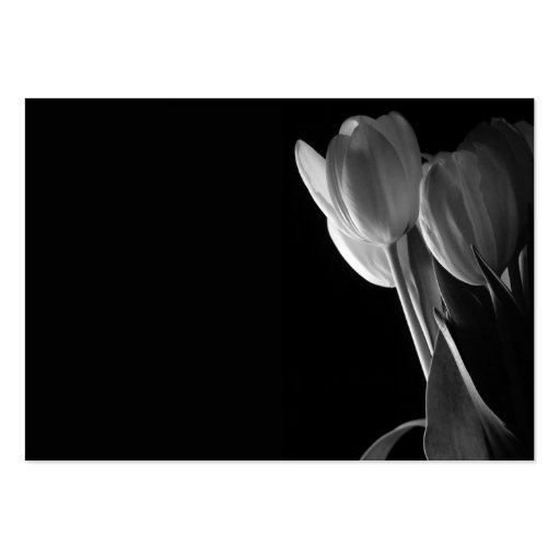 White Tulips Photo On Black Background Pack Of Chubby Business Cards