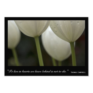 White Tulips Thank You for Your Sympathy Card