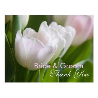 White Tulips • Thank You Postcard