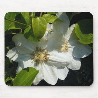 White Vine Flower Mouse Pad
