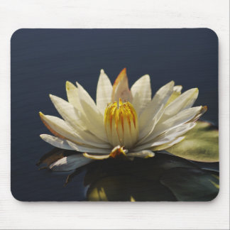 White water lilly mousemats - customizable