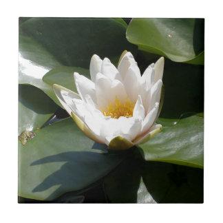 White Water Lily Lotus Flower Ceramic Tile