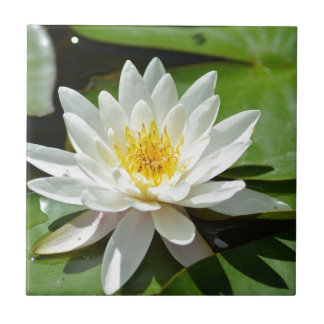 White Water Lily Lotus Tile