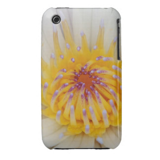 White WaterLily 'Up Close & Personal' iPhone Cover Case-Mate iPhone 3 Cases