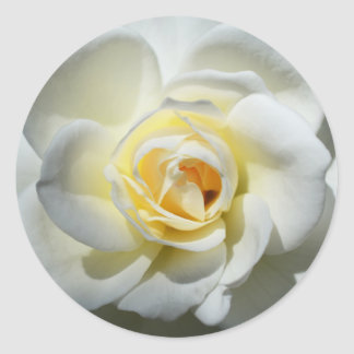 White Wedding Rose Stickers