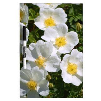 White Wild Roses Dry-Erase Whiteboard